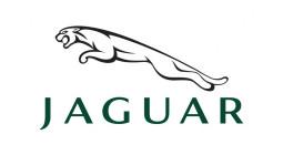Jaguar-830x450